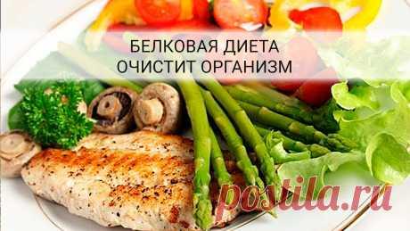 Белковая диета! Рассчитана на 5 дней — потеря веса около 6 кг Белковая диета очистит организм, избавит от лишних килограммов, и Вы почувствуете себя легкой, стройной и счастливой!