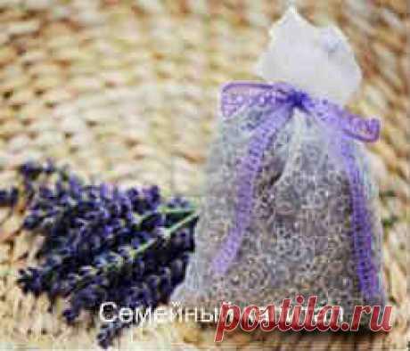 Как избавиться от мух Народные средства избавления от мух