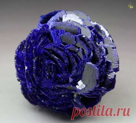 Azurite rose/ Poteryaevskoe Mine, Western-Siberian Region, Russia.... Azurite – opens the third eye chakra and the throat chakra. Connects to intuition, channeling and to the higher self. Heals headaches and migraines. Good for opening the gates of the spiritual world.