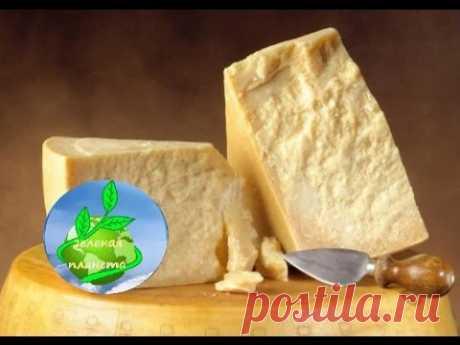 Как сделать твердый сыр(типа пармезан)