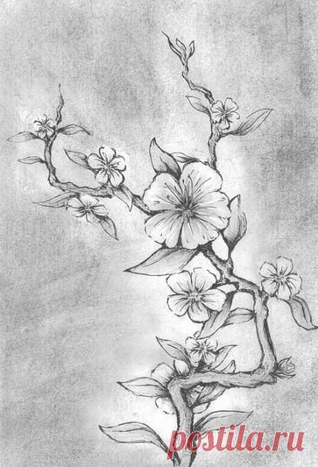 Cvety_8.jpg (Изображение JPEG, 505×740 пикселов)