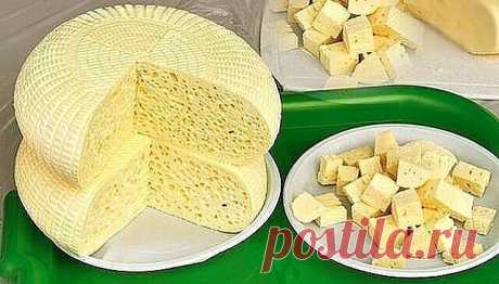 Готовим свой домашний сыр. Не хуже импортного!   Домашние сыры - 6 рецептов приготовления.   Ароматный домашний сыр  Ингредиенты:  1л кефира  1л молока  6 яиц  4 ч. ложки соли (или по вкусу)  1/3 ч. ложки красного острого перца  щепотка тмина  1 зубчик чеснока  небольшой пучок разной зелени: укроп, кинза, зелёный лук  Приготовление:  1. В кастрюлю вылить молоко и кефир, поставить на плиту. Не доводя до кипения, влить тонкой струйкой в горячую молочно-кефирную смесь слегка ...