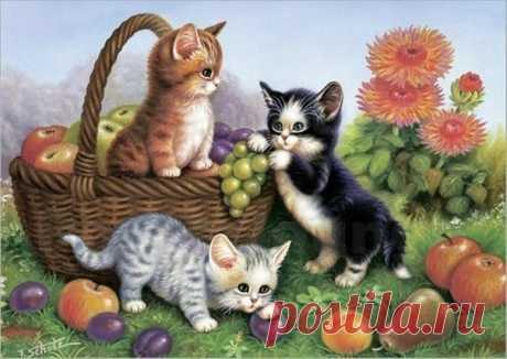 Кошки, коты, котята...Картинки для декупажа.