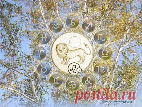 Время приобретений. Гороскоп для Льва с 30 августа по 3 октября 2021   Астропропаганда   Яндекс Дзен ♌✨ Автор: астролог Нина Стрелкова. ✧ Большая часть этого период благоприятна для приобретений, в том числе крупных, для пополнения запасов и коллекций. Успехи в материальной сфере возможны благодаря умственной активности, предприимчивости и использовании своих других природных способностей...