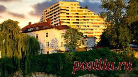 Как обойтись без нотариуса при дарении квартиры или дома | Юридические тонкости | Яндекс Дзен
