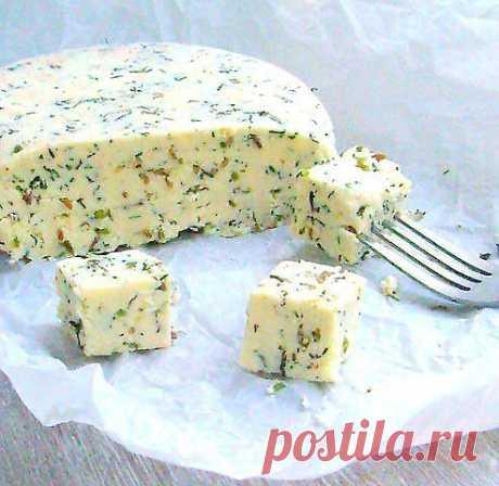 Домашний сыр с зеленью и тмином.