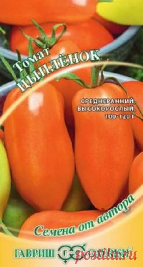 """Семена. Томат """"Цыплёнок"""" (вес: 0,1 г) Всхожесть: 82%, 98%. Среднеранний (110-115 дней от всходов до плодоношения) сорт для выращивания в открытом грунте и под пленочными укрытиями. Растение индетерминантное, требует подвязки и формирования. Плоды оранжевые, в форме вытянутой сливы, массой 100-120 г, очень вкусные и сладкие. В..."""