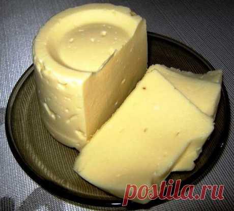 Нежнейший домашний сливочный плавленый сыр. Чтобы сделать такой, нам понадобится:  500 гр творога (у меня домашний ) Делала из магазинного молока. Из деревенского, наверное, в 100 раз вкуснее. Увы, у меня нет знакомой коровы.  1 крупное яйцо 100 гр сливочного масла 1 ч.л. соли (без горки ) 1 ч.л. соды ( без горки )
