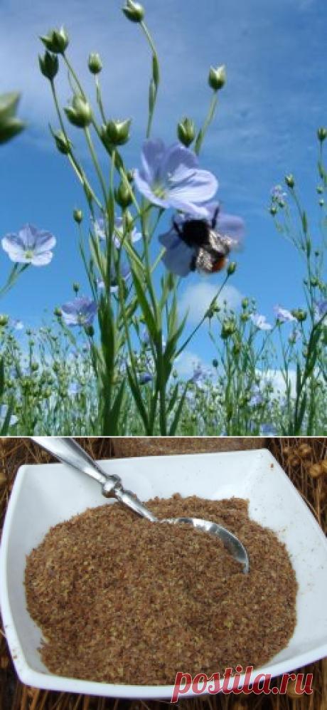 Льняная каша - польза и вред. Рецепт приготовления льняной каши :: SYL.ru