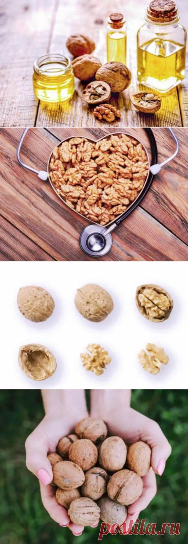12 фактов, которые доказывают пользу грецких орехов для здоровья — Бабушкины секреты
