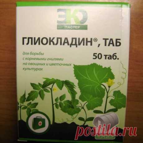 Полезные советы от болезней растений..