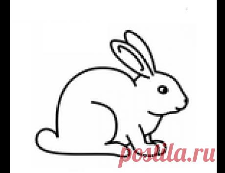 """Для кролиководства. Товары и услуги компании """"Поилка""""  Купить Для кролиководства в Хмельницкой области - цены, товары и услуги компании """"Поилка"""": +380 (97) 733-37-94 доб. Kyivstar"""