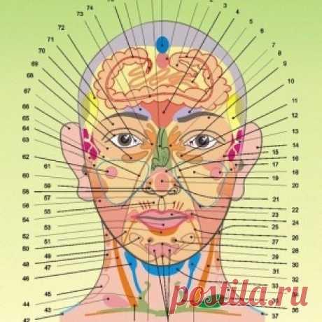 Наши болезни написаны у нас на лице - МирТесен