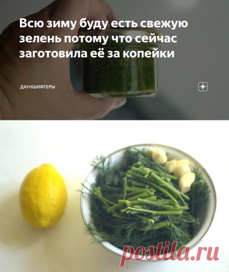 Всю зиму буду есть свежую зелень потому что сейчас заготовила её за копейки   Дауншифтеры   Яндекс Дзен