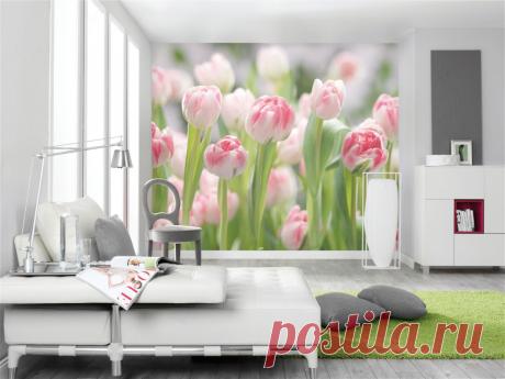 Как обычные фотообои помогли мне «увеличить» комнату: выбираем правильные оттенки и рисунки | Игорь Волосков | Яндекс Дзен