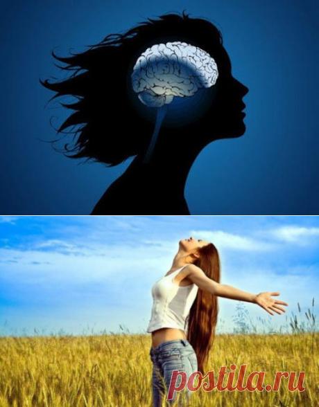 Нейробиологи утверждают: есть только 4 вещи, которые нужны для счастья! Да ладно! - Кулинария, красота, лайфхаки