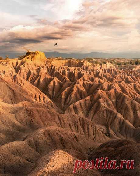 В Сети показали самые завораживающие пейзажи года (фото) - Новости Mail.ru
