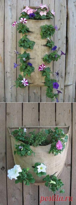Цветы в мешке. Креативная идея выращивания цветов / Сад и огород / PassionForum - мастер-классы по рукоделию
