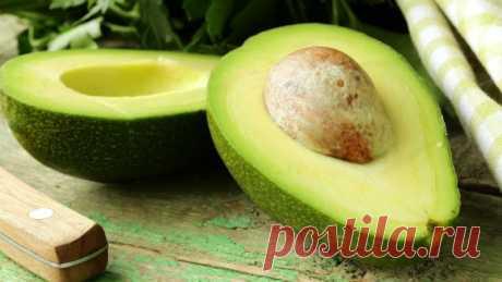 Как посадить косточку авокадо - уход за авокадо в домашних условиях