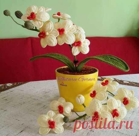 Красивая орхидея крючком