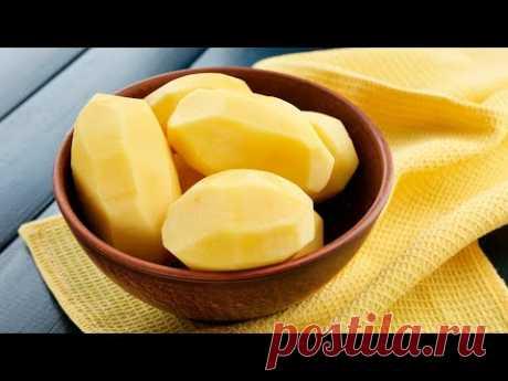 4 блюда из картофеля, которые вы приготовите еще не раз. Рецепты от Всегда Вкусно!