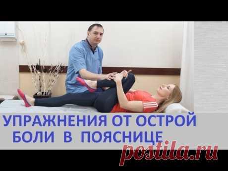 Los ejercicios del dolor en los riñones - para el tratamiento de la espalda a la hernia del disco, la radiculitis, la osteocondrosis.
