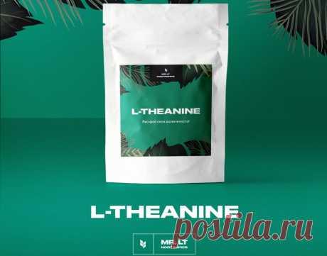L-теанин: полезные свойства, применение, обзор эффектов