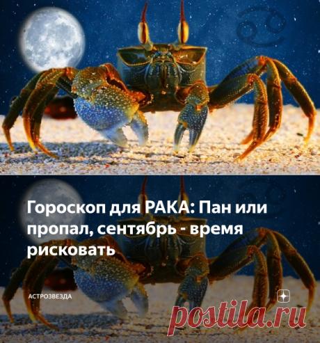Гороскоп для РАКА: Пан или пропал, сентябрь - время рисковать | АстроЗвезда | Яндекс Дзен