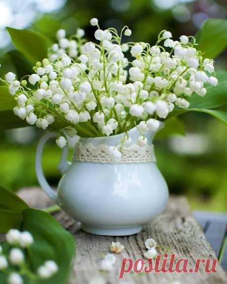 Магия Цветов - Ни одна Зима не длилась вечно, ни одна Весна не пропускала свой приход
