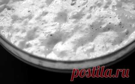 Алхимия пекаря: рецепт пшеничной и ржаной закваски   Всем Хлеб!