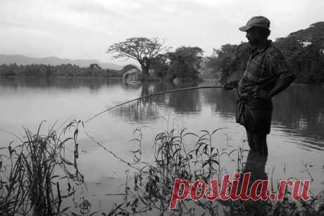 4 полезных лайфхака для рыбалки от бывалых рыболовов | Блоги о даче и огороде, рецептах, красоте и правильном питании, рыбалке, ремонте и интерьере