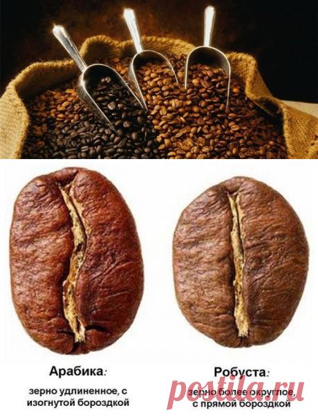 Как нас обманывают производители кофе