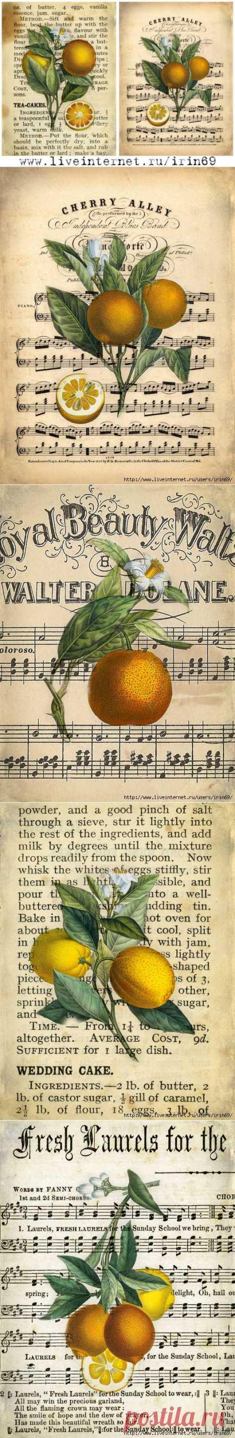 Vintage Orange.