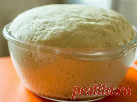 Что добавить в тесто для пышности: лучшие секреты от пекаря | Кулинарные записки обо всём | Яндекс Дзен