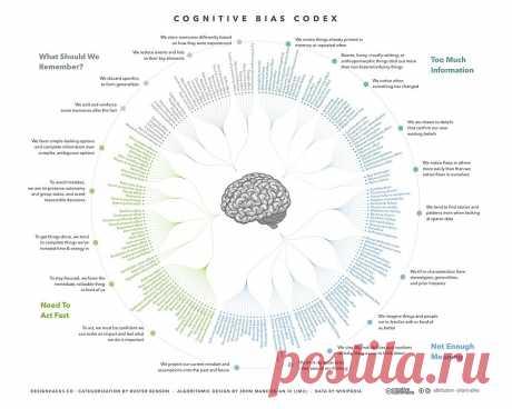 Иллюзии мозга. Когнитивные искажения из-за переизбытка информации — Infographer