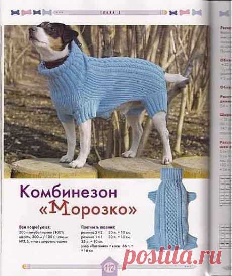 We knit for dogs the hands. Spokes