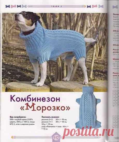 Вяжем для собак своими руками. Спицы