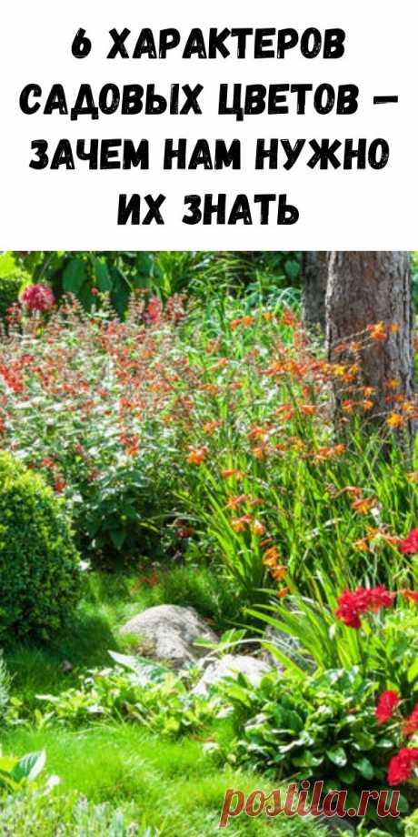 6 характеров садовых цветов — зачем нам нужно их знать - Журнал для женщин