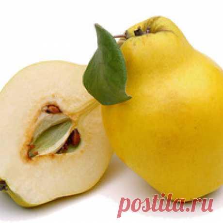 Los platos con el membrillo - 21 receta   la Elección de las recetas en koolinar.ru Membrillo - el fruto perfumado parecido al mismo tiempo a la manzana, y a la pera. En el tipo fresco el membrillo tiene el gusto agrete que teje y la pulpa firme. Por eso en crudo no la emplean. Pero el membrillo cocido adquiere el color rosáceo, sladkovatyy el gusto y la consistencia suave. Este fruto contiene una gran cantidad de las substancias pectosas, por que son populares las mermeladas, la confitura, la mermelada, las frutas confitadas y la jalea del membrillo. La cuecen,
