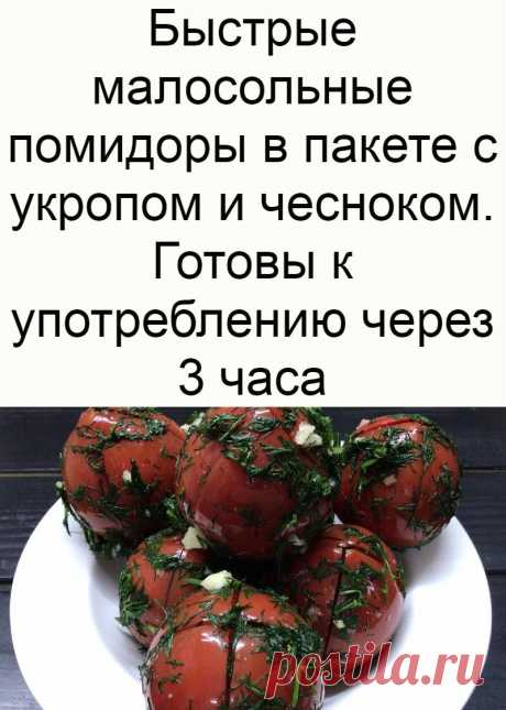 Быстрые малосольные помидоры в пакете с укропом и чесноком. Готовы к употреблению через 3 часа