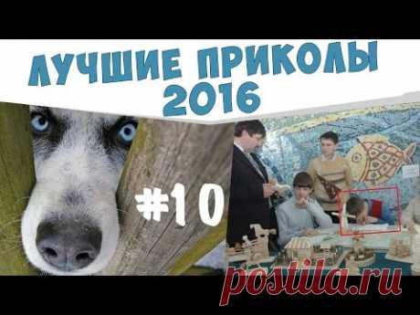 ПРИКОЛЫ №10 Самые ржачные приколы 2016 - YouTube