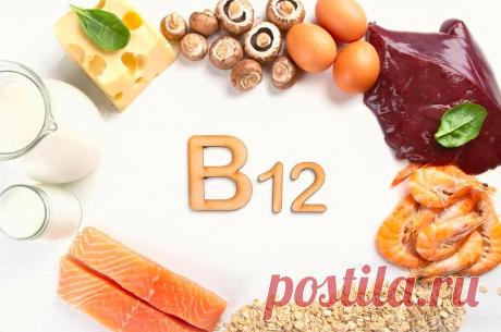 🤍❤Сильная иммунная система: Какие продукты содержат витамин В12 | Школа Снижения Веса | Яндекс Дзен