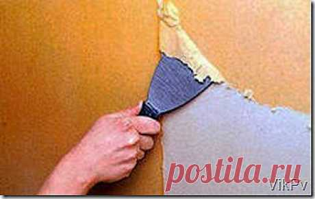 How quickly to remove old wall-paper