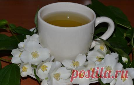 Чай для увеличения памяти, улучшает кровообращение, укрепляет нервы, поможет при стрессе и даже избавит от бессонницы! Чай для увеличения памяти, улучшает кровообращение, укрепляет нервы, поможет при стрессе и даже избавит от бессонницы!  Пью этот чай регулярно, он эффективно успокаивает, при этом уменьшает напряжение…