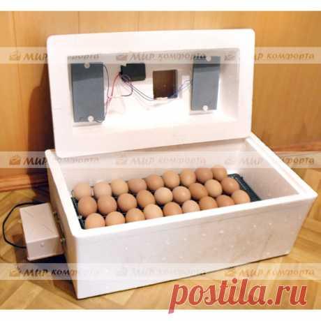 Инкубаторы для яиц купить по недорогой цене Купить Инкубаторы для яиц с оплатой при получении в любой точке России. Гарантия от 12 месяцев.