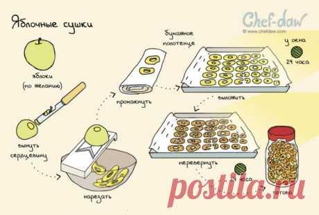 Заготовки на зиму: шпаргалки, которые пригодятся на кухне
