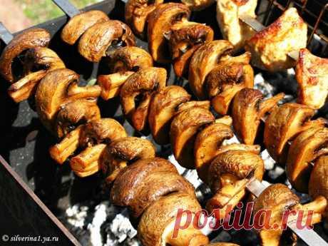 Шашлык из шампиньонов - Foodclub — кулинарные рецепты с пошаговыми фотографиями