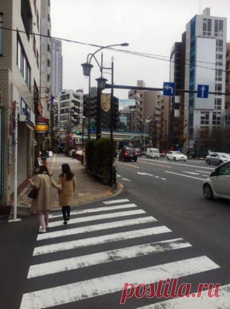 Мосты над перекрестками Токио | Катюха | Яндекс Дзен