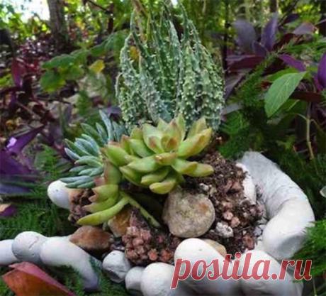 Необычный вазон для сада из пары резиновых перчаток и цемента