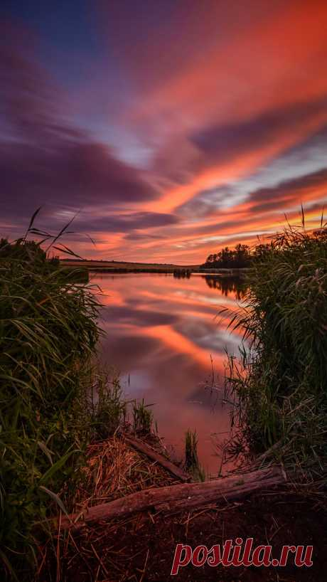 ... sunrise at a pond in germany🍀🌅🍀 Explore newman.pictures' photos on Flickr. newman.pictures has uploaded 28 photos to Flickr.